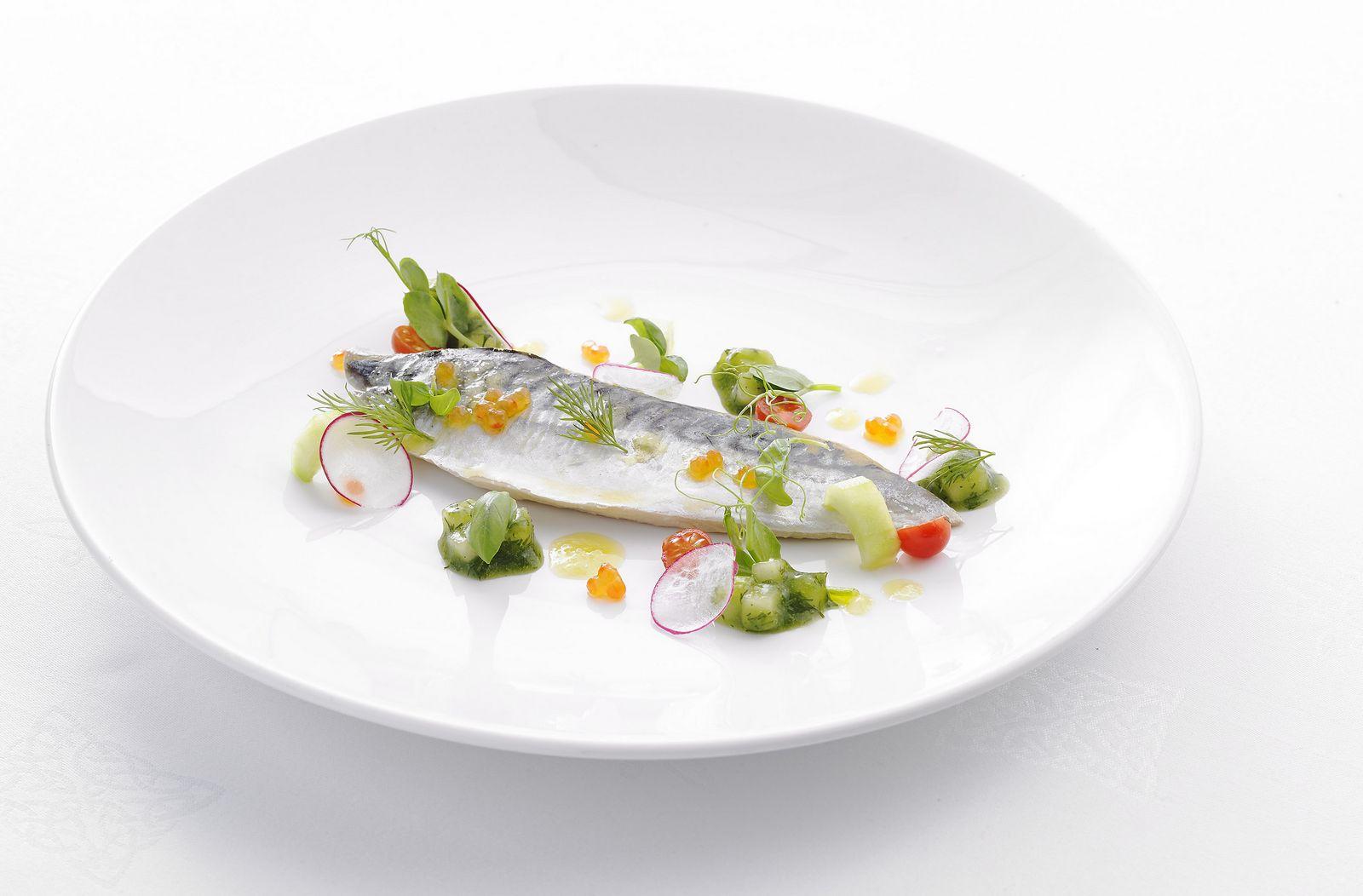 x-food-02.jpg