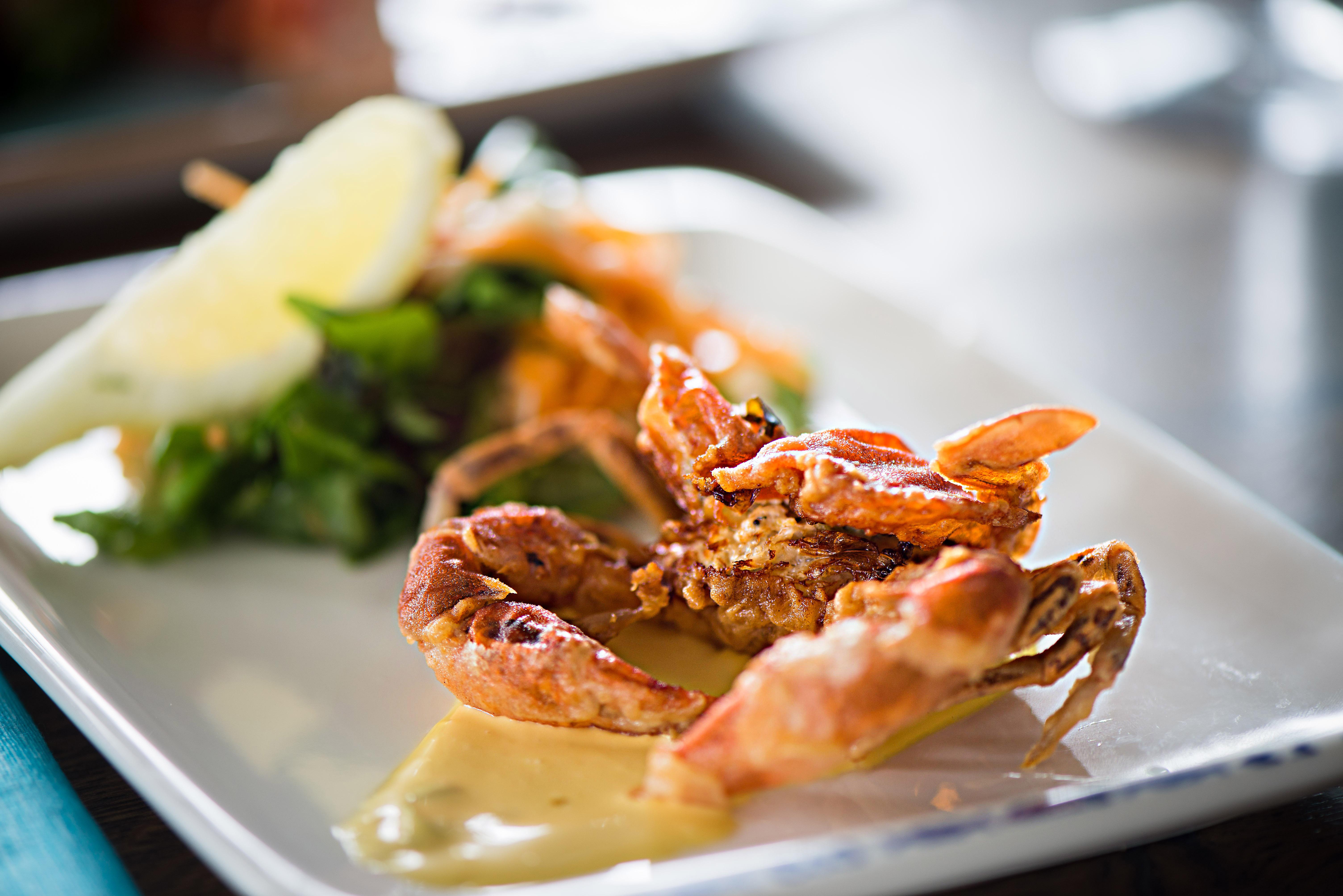 crab-1.jpg
